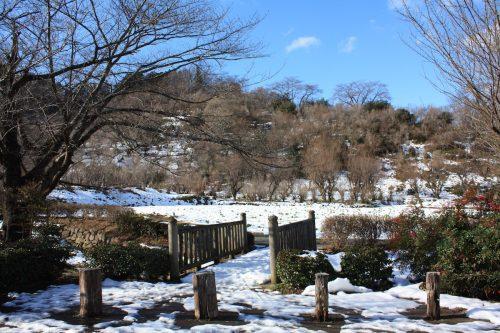 福島県福島市 花見山公園の情報 2019年1月11日 IMG_5513