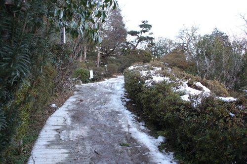 福島県福島市 花見山公園の情報 2019年1月11日 IMG_5518