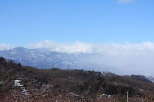福島県福島市 花見山公園の情報 2019年1月11日 IMG_5525
