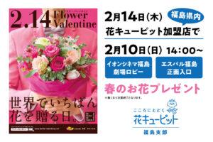 花キューピット福島支部、フラワーバレンタイン