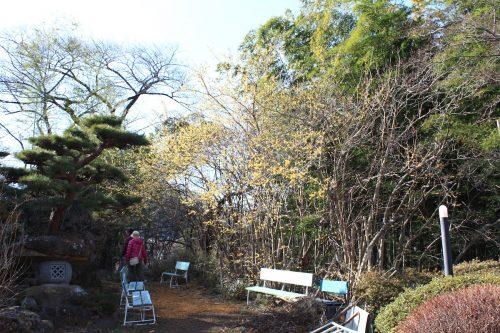 福島県福島市 花見山公園の情報 2019年2月7日 IMG_5530