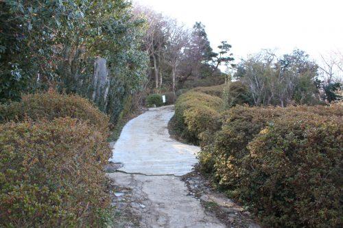 福島県福島市 花見山公園の情報 2019年2月7日 IMG_5535