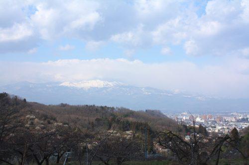 福島県福島市 花見山公園の情報 2019年3月13日 IMG_5667