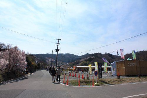 福島県福島市 花見山公園の情報 2019年4月5日 IMG_5688