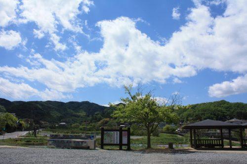 福島県福島市 花見山公園の情報 2019年5月7日 IMG_5979