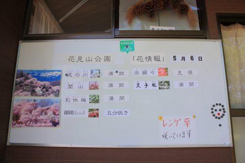 福島県福島市 花見山公園の情報 2019年5月7日 IMG_5983