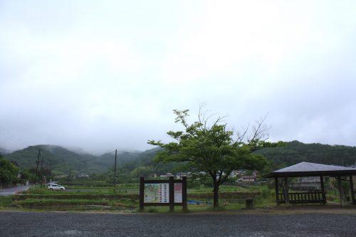 福島県福島市 花見山公園の情報 2019年6月10日 IMG_6045