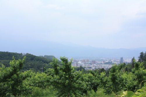 福島県福島市 花見山公園の情報 2019年7月3日 IMG_6139