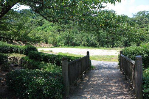 2019年8月6日福島県福島市 花見山公園の情報。菜の花畑だった所