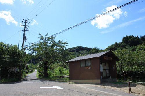 福島県福島市 花見山公園の情報 2019年9月12日 IMG_6216