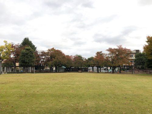 福島県福島市 新浜公園の紅葉 2019年11月6日