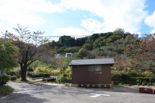 福島県福島市 花見山公園の情報 2019年11月5日 IMG_6693