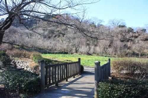 福島県福島市 花見山公園の情報 2019年12月9日 IMG_6799