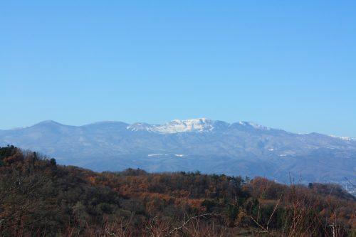 福島県福島市 花見山公園の情報 2019年12月9日 IMG_6805