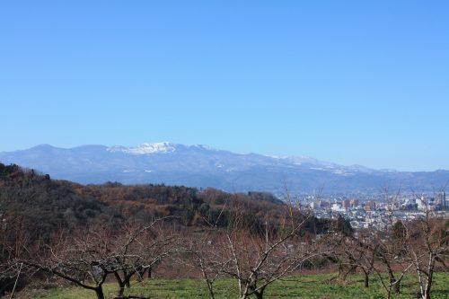 福島県福島市 花見山公園の情報 2019年12月9日 IMG_6806