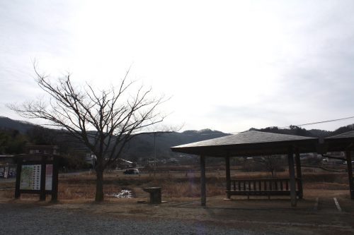 福島県福島市 花見山公園の情報 2020年1月7日 IMG_6811