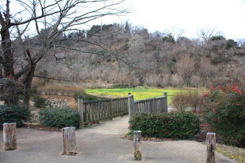 福島県福島市 花見山公園の情報 2020年1月7日 IMG_6812