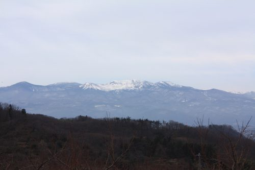 福島県福島市 花見山公園の情報 2020年1月7日 IMG_6822