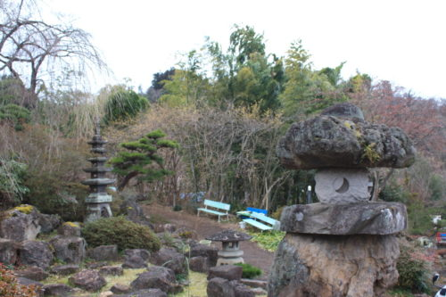 福島県福島市 花見山公園の情報 2020年1月20日 IMG_6833
