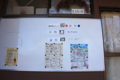 福島県福島市 花見山公園の情報 2020年3月3日 IMG_6876