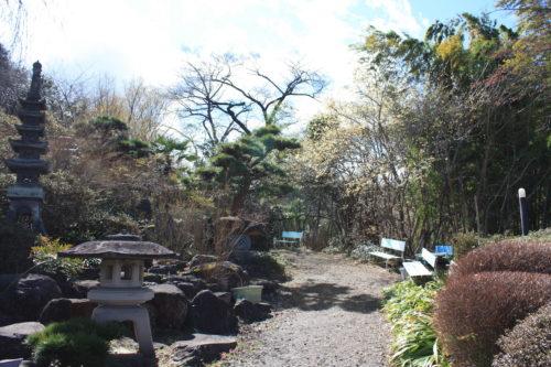 福島県福島市 花見山公園の情報 2020年3月3日 IMG_6877