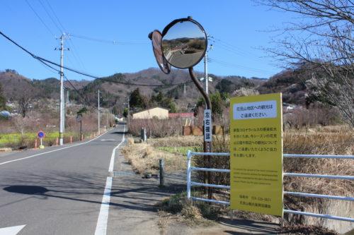 福島県福島市 花見山公園の情報 2020年3月19日 IMG_6912