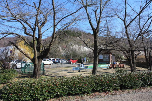 福島県福島市 花見山公園の情報 2020年3月19日 IMG_6924