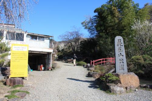福島県福島市 花見山公園の情報 2020年3月19日 IMG_6926