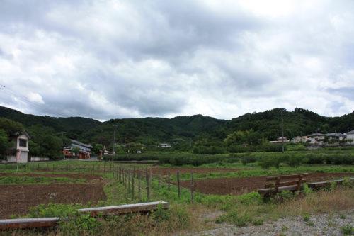 福島県福島市 花見山公園の情報 2020年7月2日 IMG_11