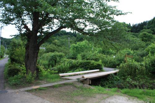 福島県福島市 花見山公園の情報 2020年7月2日IMG_4