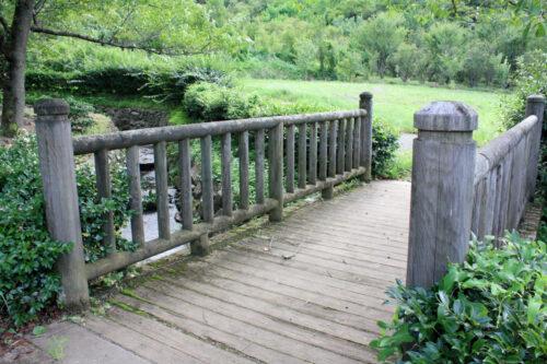 福島県福島市 花見山公園の情報 2021年8月10日 IMG_8792