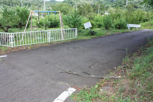 福島県福島市 花見山公園の情報 2021年8月10日 IMG_8796