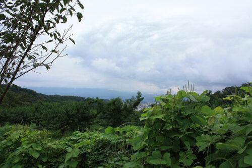 福島県福島市 花見山公園の情報 2021年9月3日 IMG-